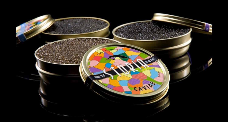 Caviar Sturia - L'Univers de Jeff